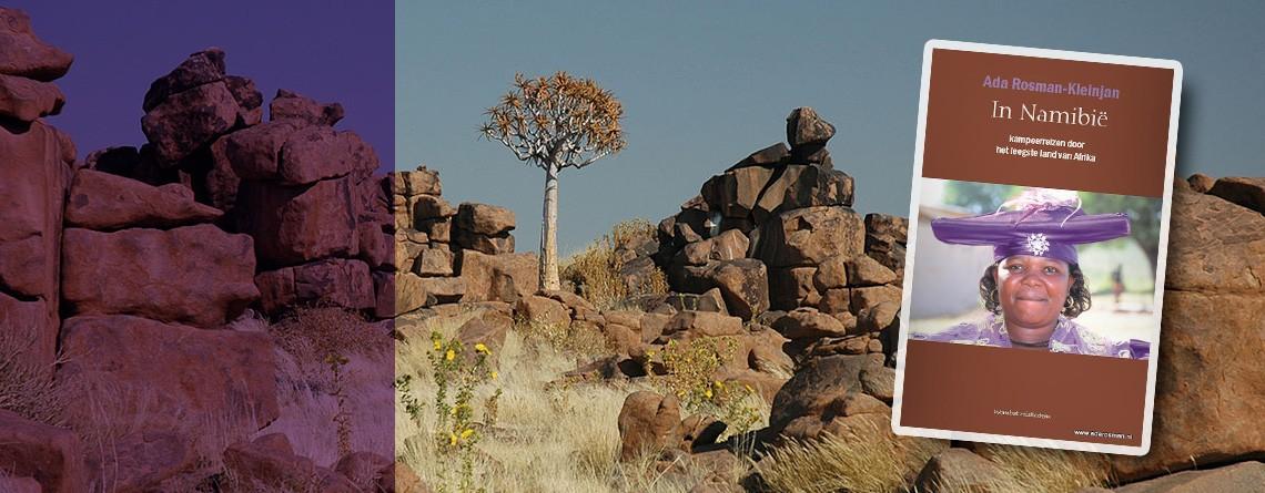 Reisboek: In Namibië  (kampeerreizen door het leegste land van Afrika)