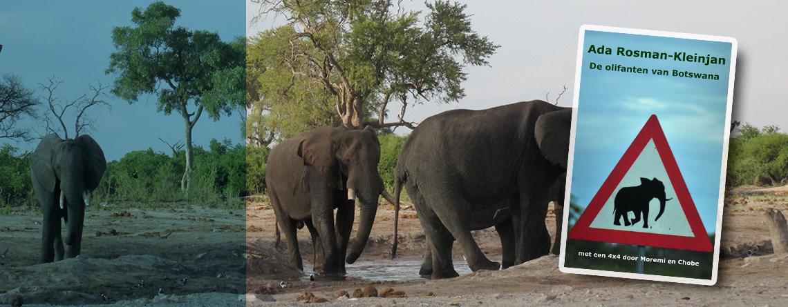 Reisboek: De olifanten van Botswana