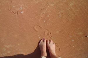 De woestijn in…
