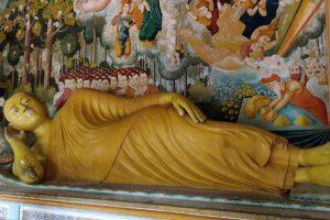 Boeddha's, monniken en luipaarden